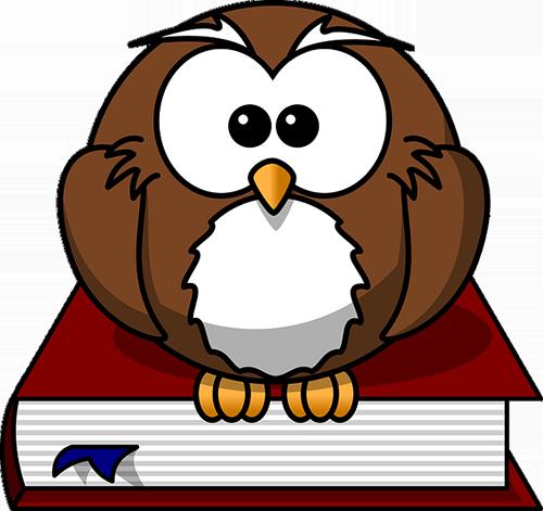 A cartoon owl sitting on book.